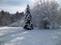 PHP WInter
