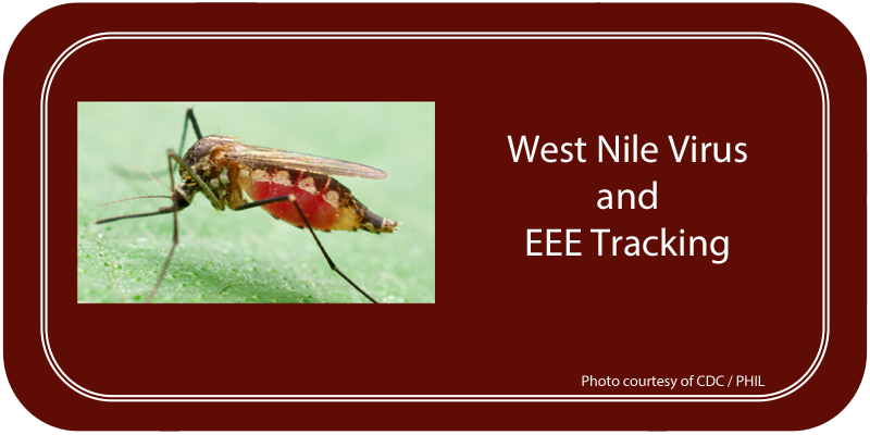 West Nile Protection / Info